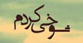 Watch Serial Shookhi Kardam Online